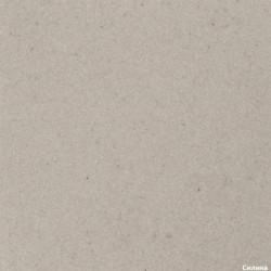 Гранитная мойка AQUASanita SIMPLEX SQS100 силика (111)